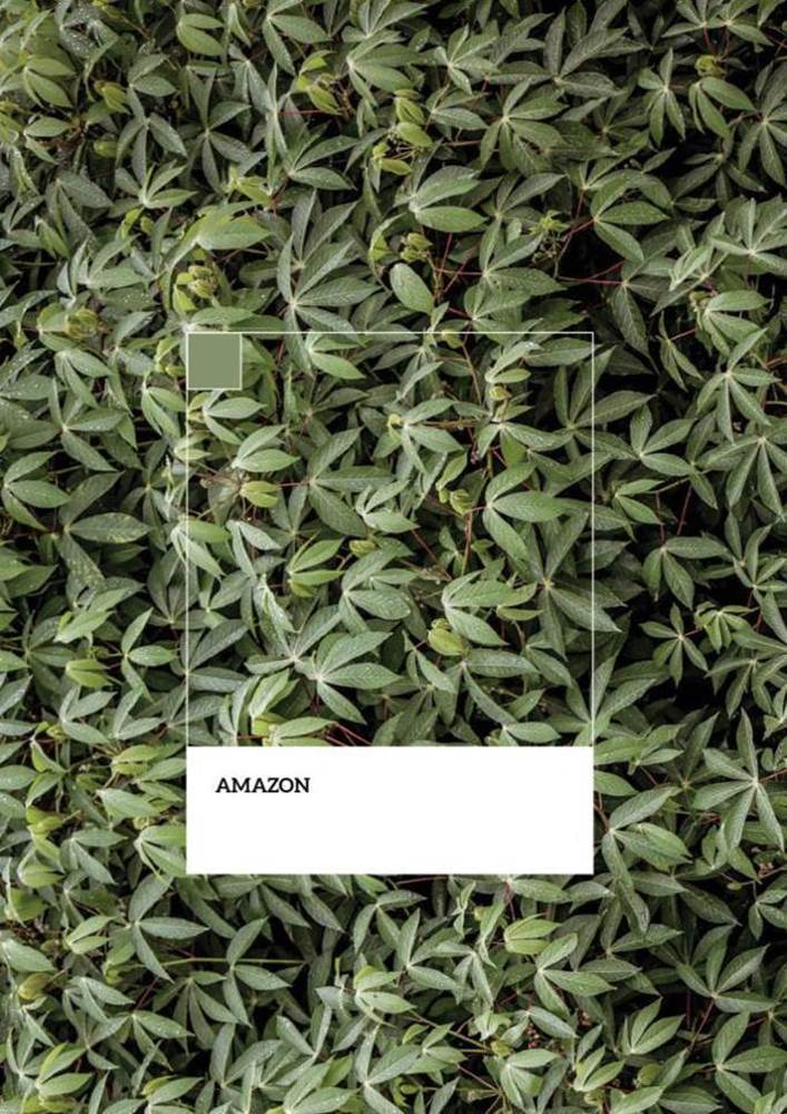 Picture of SofLens® Natural Colors - Amazon
